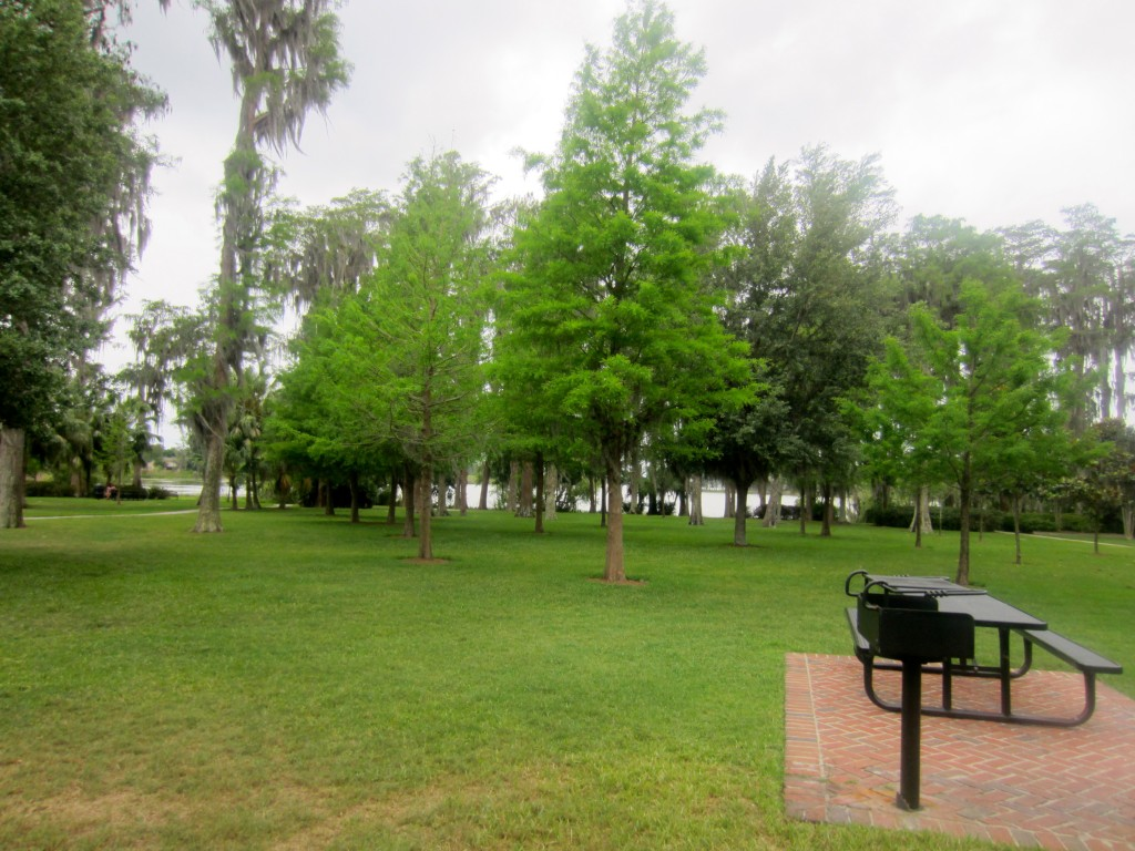 Cypress Grove Park Picnic Table