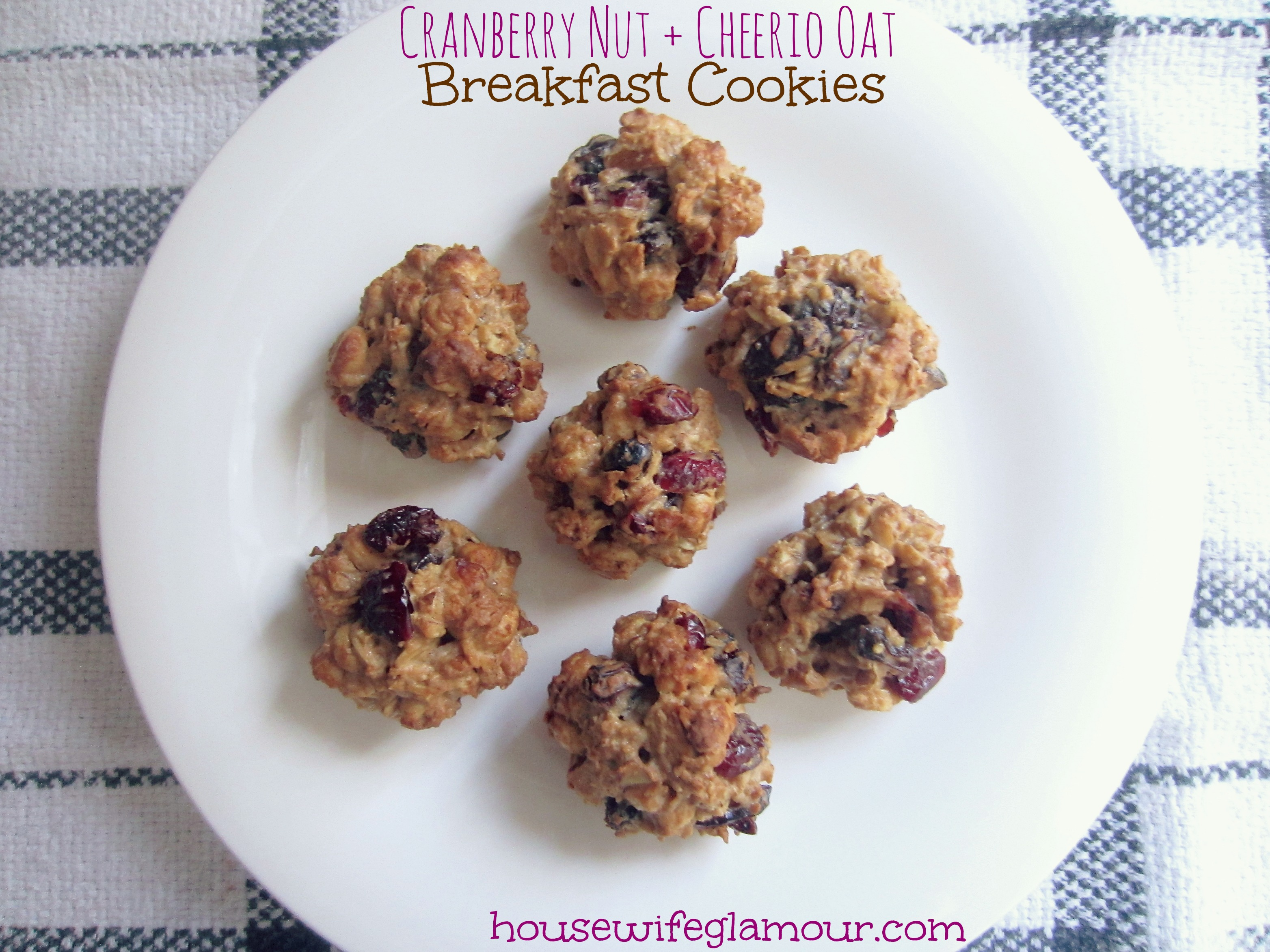Cranberry Nut Cheerio Oat Breakfast Cookies