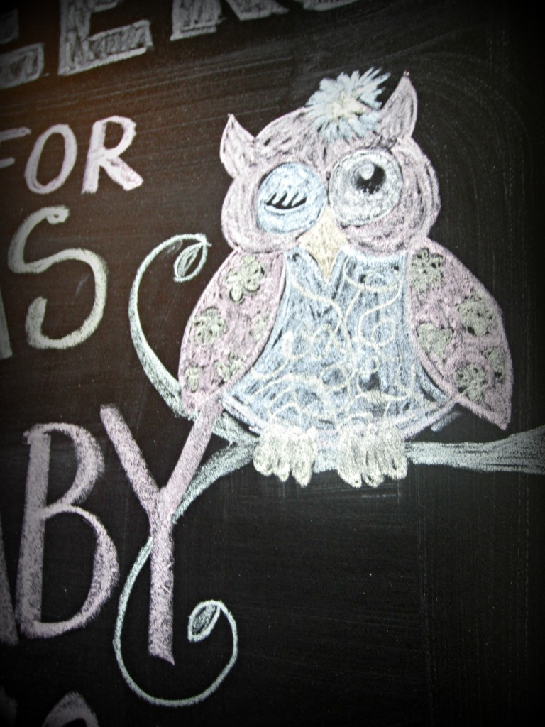 aby shower chalkboard owl