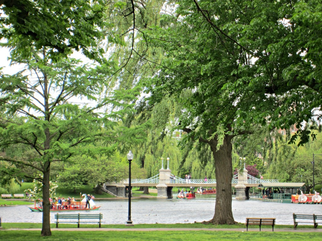 Boston Common boats