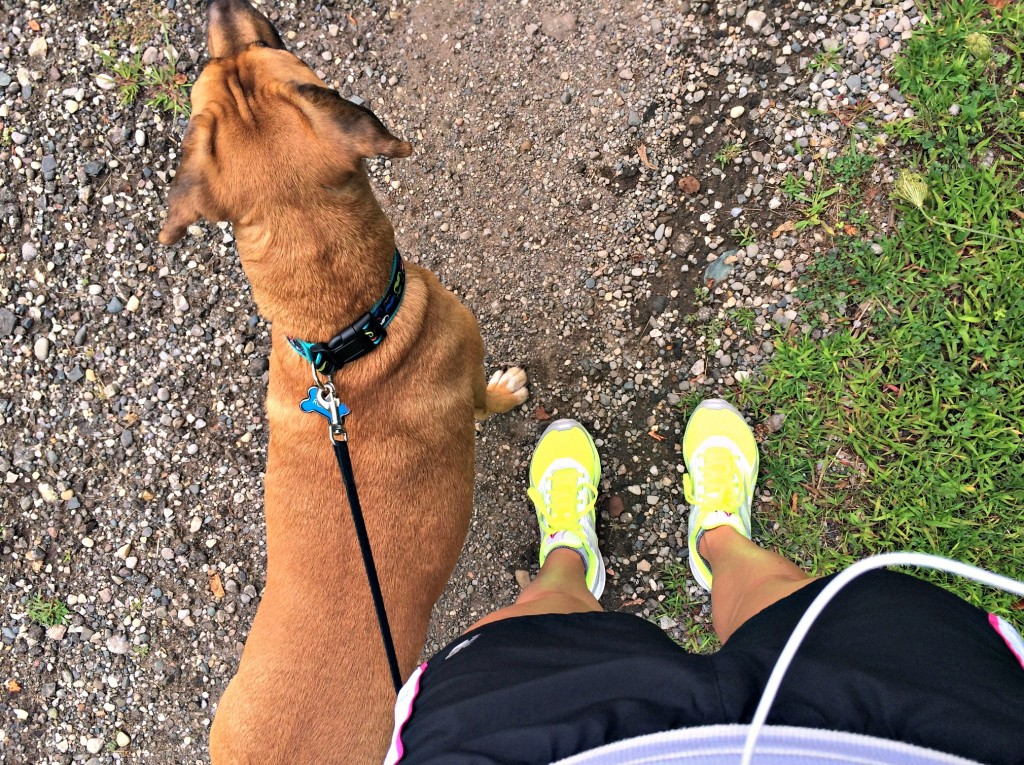 running with roadie on the trails