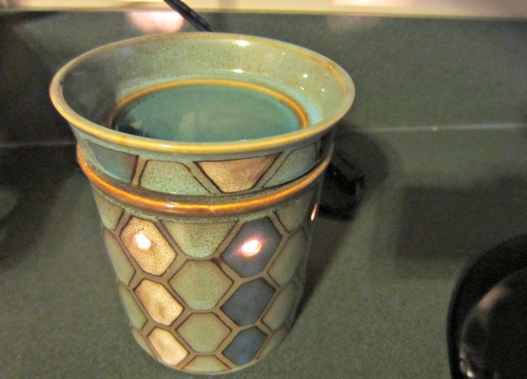 scentsy scent tulis warmer