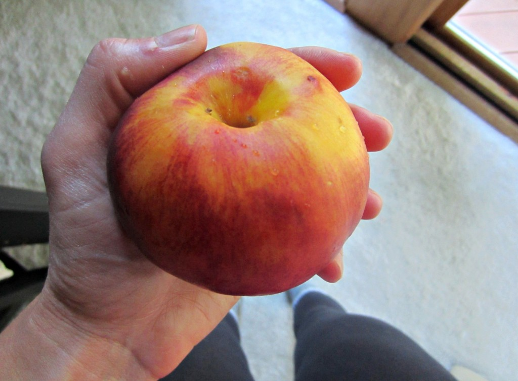 peach for a snack