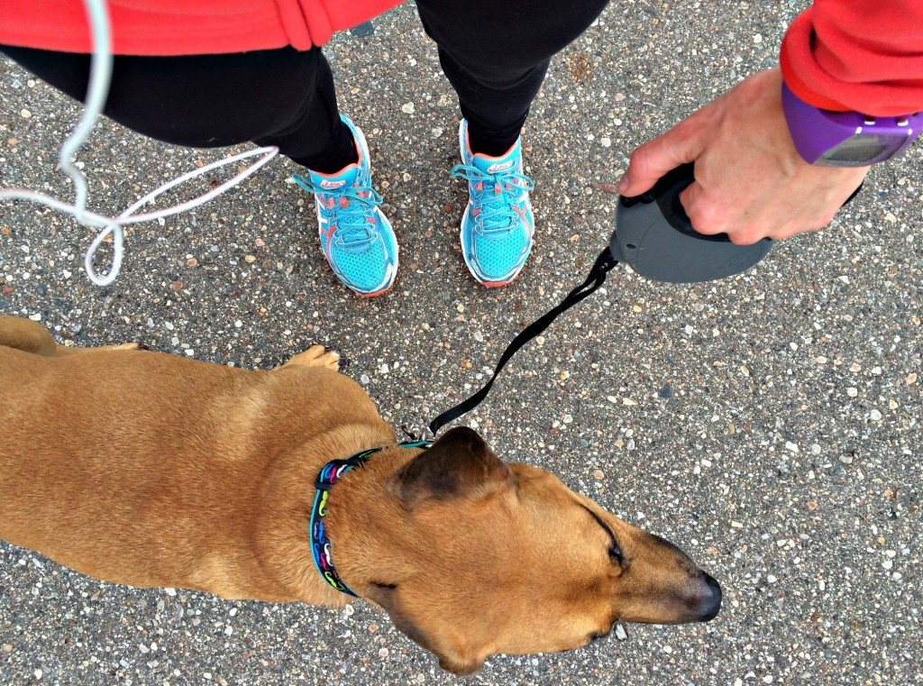 training run with roadie 3 miles