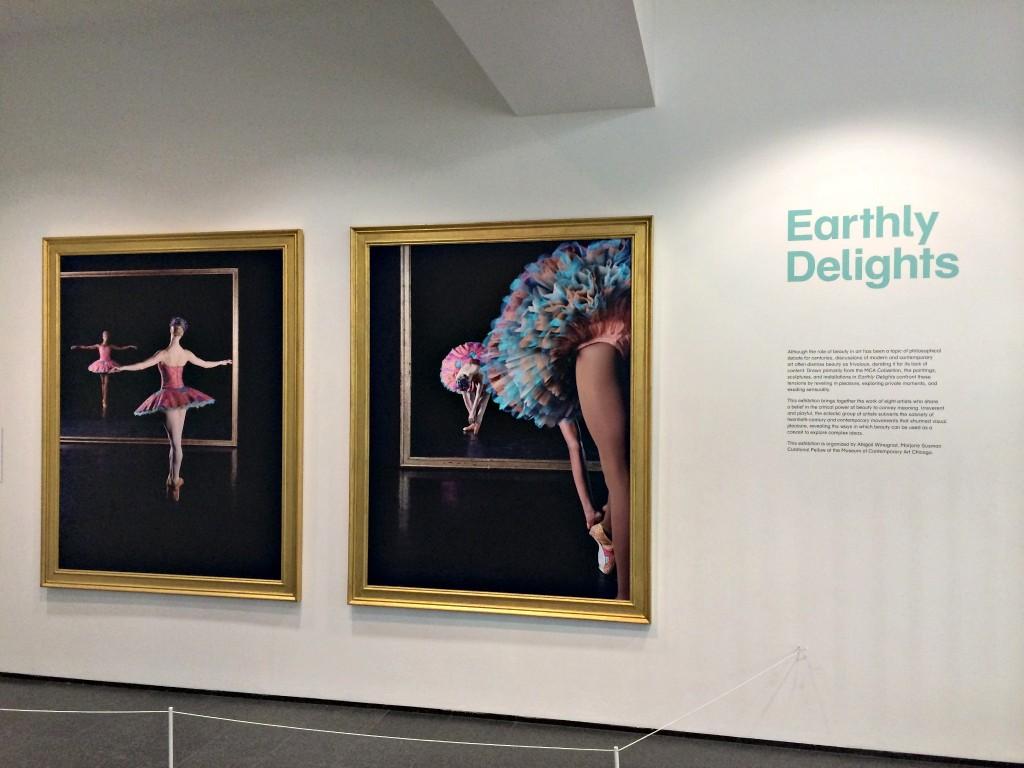 Contemporary Museum of Art Chicago