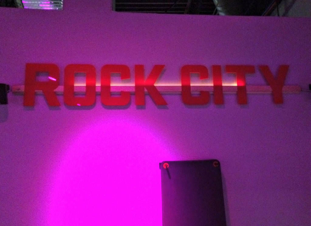 Rock City Fitness Michigan review