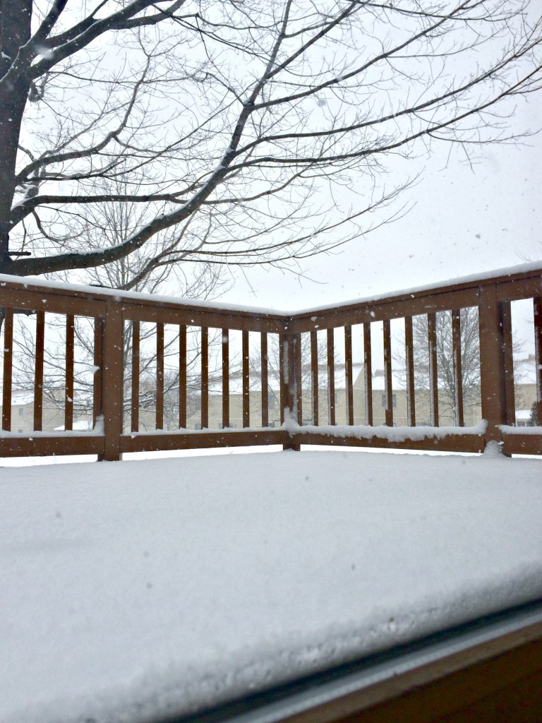 first big snowfall of winter 2015