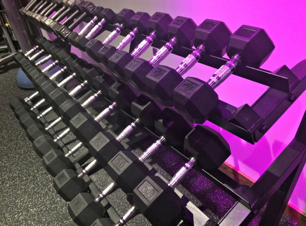 free weight dumbbells rock city fitness