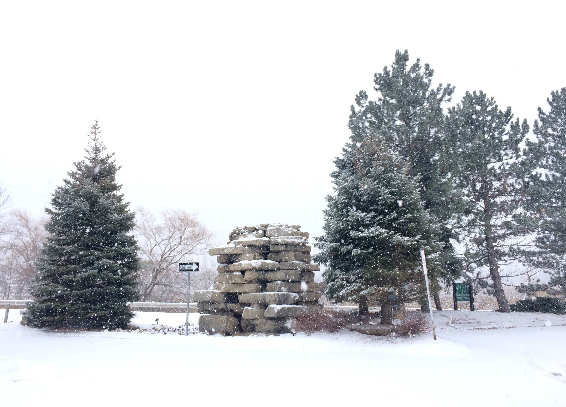 winter snowfall michigan